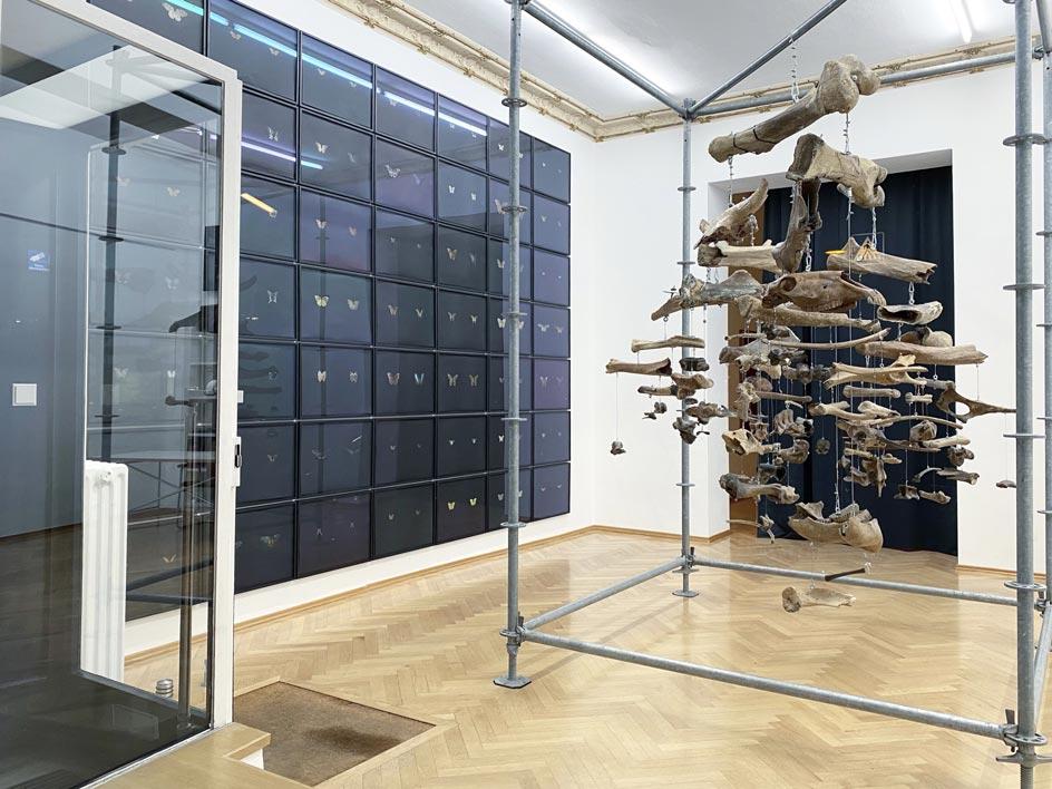 Interactions-5_Sexauer_Gallery_Berlin_Showroom